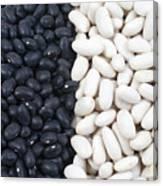 Black Beans And White Beans Canvas Print