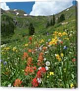 Black Bear Pass Landscape Canvas Print