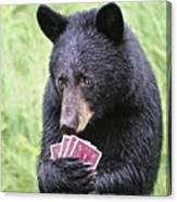 Black Bear Says I Call  Canvas Print
