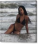 Black Bikinis 35 Canvas Print