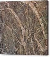 Black Canyon Geology Canvas Print