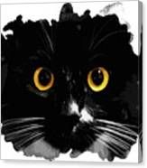 Black Cat, Yellow Eyes Canvas Print