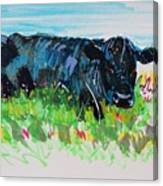 Black Cow Lying Down Painting Canvas Print