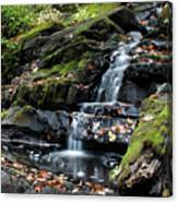 Black Creek Falls In Autumn, 2016 Canvas Print