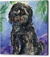 Black Dog Canvas Print