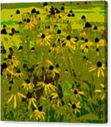 Black Eyed Susan Work Number 21 Canvas Print
