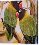 Black Faced Love Birds.  Chloe The Flying Lamb Productions  Canvas Print