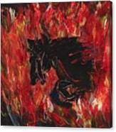 Black Fury Canvas Print