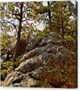 Black Hills Boulders Canvas Print
