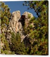 Black Hills Rock Feature Canvas Print