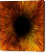 Black Hole Canvas Print
