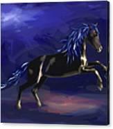 Black Horse At Night Canvas Print