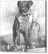 Black Labrador Duck Hunting Pencil Portrait Canvas Print