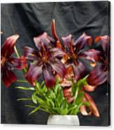 Black Lilies Canvas Print