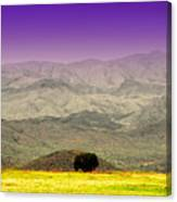 Black Mountains Az Canvas Print