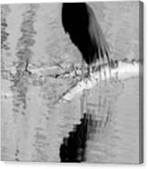 Black On White Bird Canvas Print