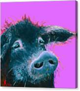 Black Pig Painting On Purple Canvas Print