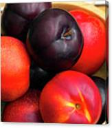 Black Plums And Nectarines In A Wooden Bowl Canvas Print