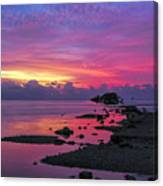 Black Point Canvas Print