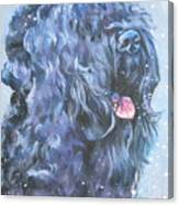 Black Russian Terrier In Snow Canvas Print