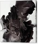 Black Smoke Canvas Print