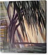 Black Swamp Canvas Print