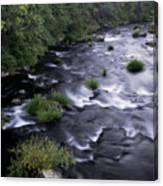 Black Waters Canvas Print