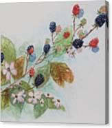 Blackberry Composition Canvas Print