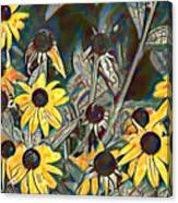 Blackeyed Susans Watercolor Canvas Print