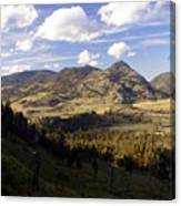 Blacktail Road Landscape Canvas Print