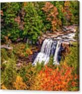 Blackwater Falls Wv Canvas Print