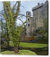 Blarney Castle 3 Canvas Print