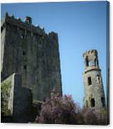 Blarney Castle And Tower County Cork Ireland Canvas Print
