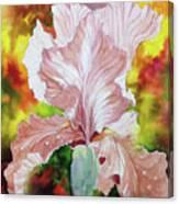 Blazing Iris Canvas Print