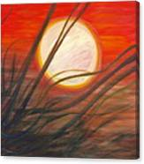 Blazing Sun And Wind-blown Grasses Canvas Print