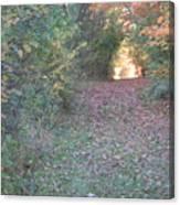 Blazing Trail Canvas Print