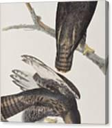 Blck Warrior Canvas Print