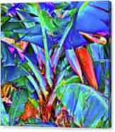 Bleu Banana Canvas Print