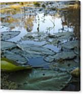 Blind River-4 Pm-september '15 Canvas Print