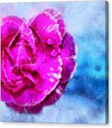 Blissful Pink Canvas Print