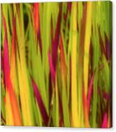 Blood Grass Canvas Print