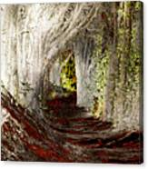 Blood Redwoods Canvas Print