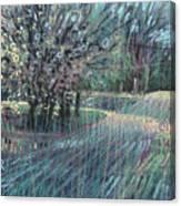 Blooming Bradford Canvas Print