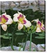 Blooming By The Pond Canvas Print