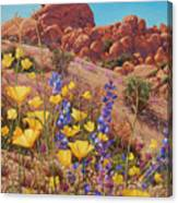 Blooming Desert Canvas Print