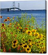 Blooming Flowers By The Bridge At The Straits Of Mackinac Canvas Print