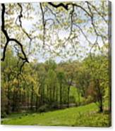 Blooming Landscape Canvas Print