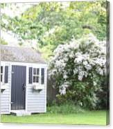 Blooming Tree Next To Shed Canvas Print