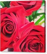 Blooms Of Red Canvas Print