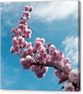 Blossom Impressions Canvas Print